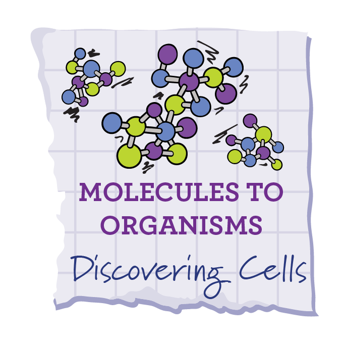 Discovering Cells